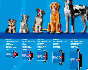1 dog size chart