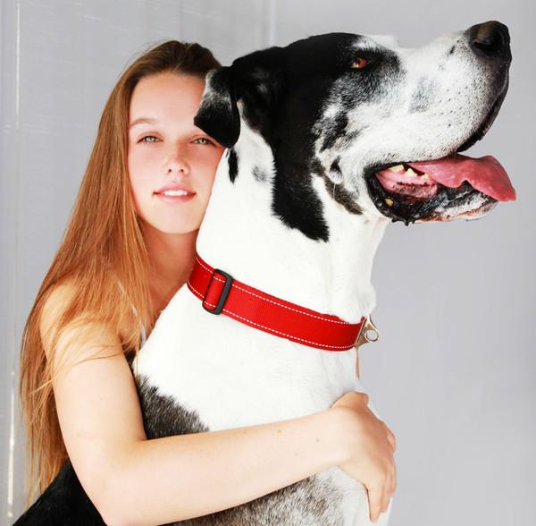Rogz MegaDogz Dog Collar XXXL Fits Neck 27in - 39in