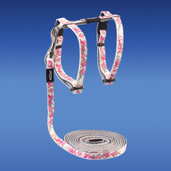 GlowCat Harness and Leash Set