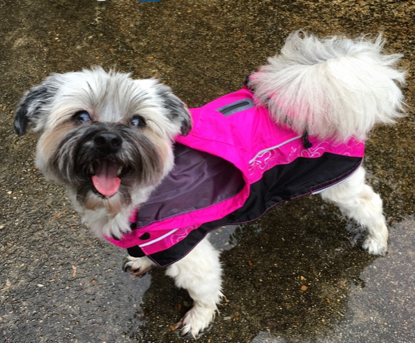 RainSkinz Reflective Dog Rain Coat