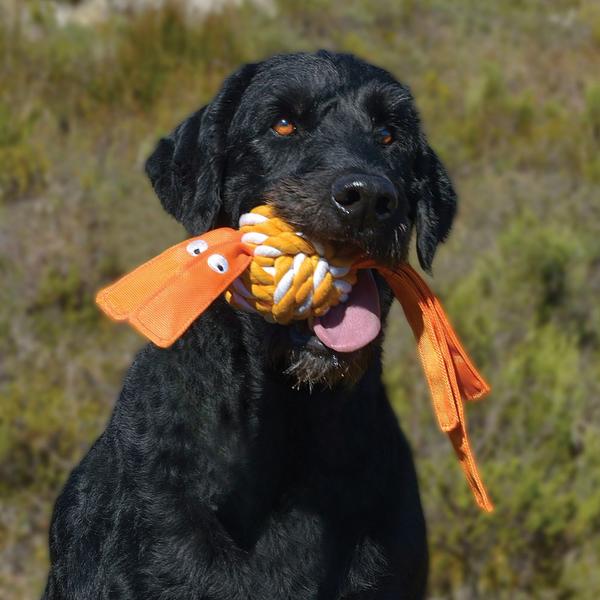 Cowboyz Rope Toy