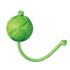 Flingz Ball with Rope Dog Toy