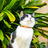 Catscollars2016 5