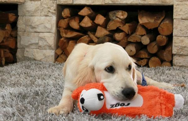 Rogz Dog Toy Thinz - Small 8in