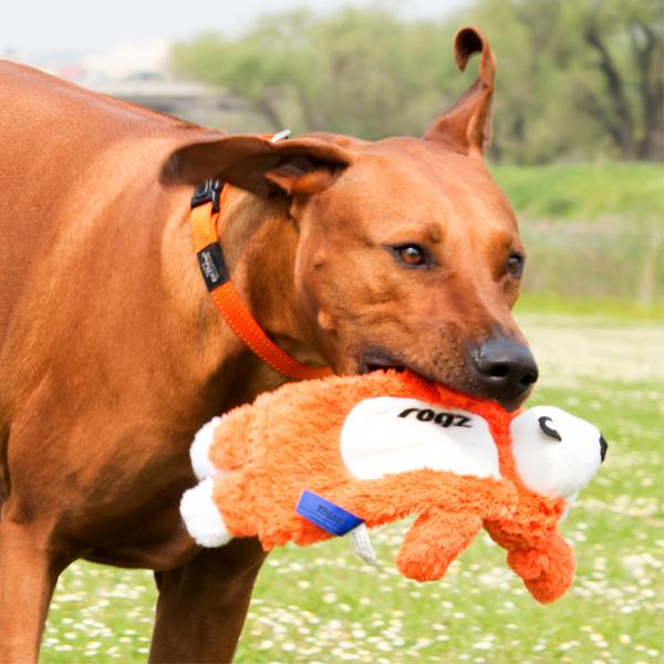 Rogz Dogz Toy Thinz - Large 13in